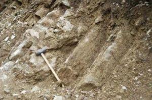 Глинистая порода почвы