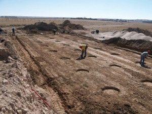 Особенности почвы