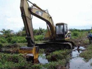 Избавление участка от лишних вод